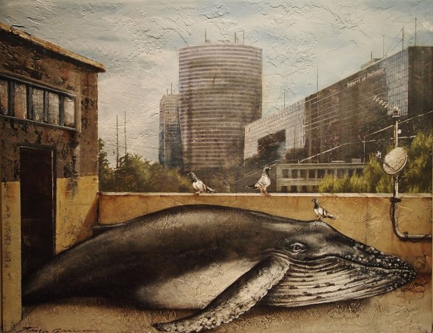 Rooftop Whale